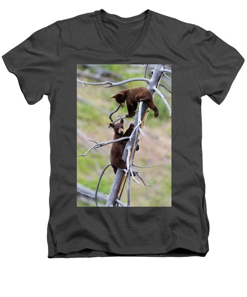 Pair Of Bear Cubs In A Tree Men's V-Neck T-Shirt