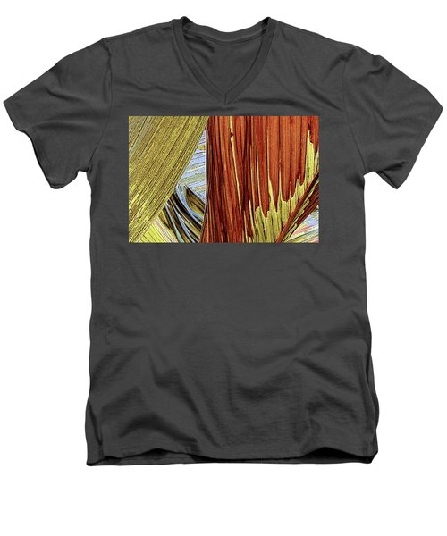 Palm Leaf Abstract Men's V-Neck T-Shirt by Ben and Raisa Gertsberg