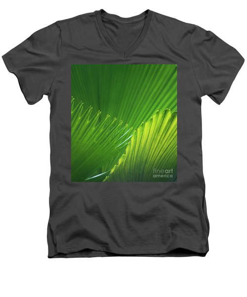 Palm Leaves Men's V-Neck T-Shirt
