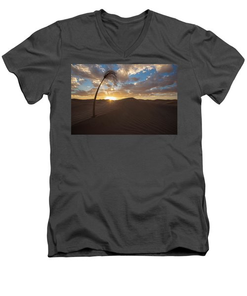 Palm On Dune Men's V-Neck T-Shirt