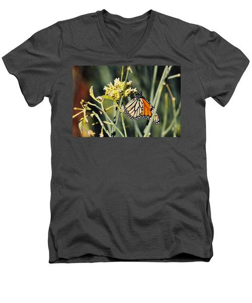 Men's V-Neck T-Shirt featuring the photograph Palm Springs Monarch by Kyle Hanson