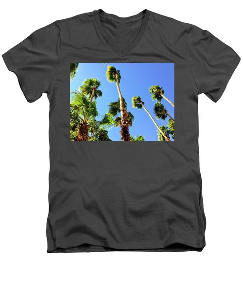 Palm Trees Looking Up Men's V-Neck T-Shirt