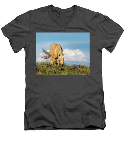 Palomino Wild Stallion In The Evening Light Men's V-Neck T-Shirt