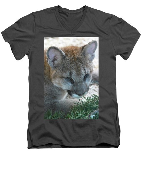 Men's V-Neck T-Shirt featuring the photograph Palus by Laddie Halupa