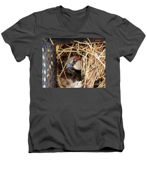 Papa Bird Men's V-Neck T-Shirt