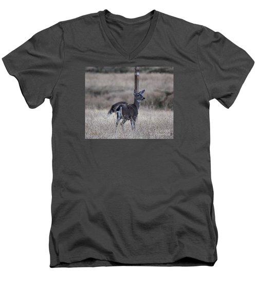 Papa Deer Men's V-Neck T-Shirt