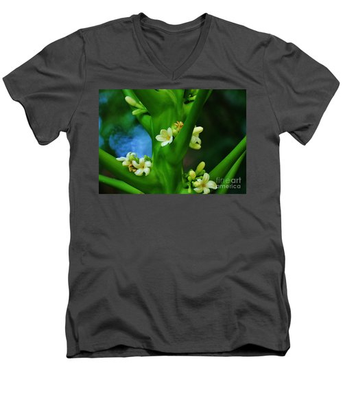 Papaya Blossoms Men's V-Neck T-Shirt