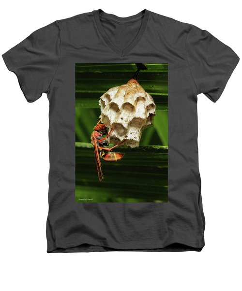 Paper Wasps 00666 Men's V-Neck T-Shirt by Kevin Chippindall