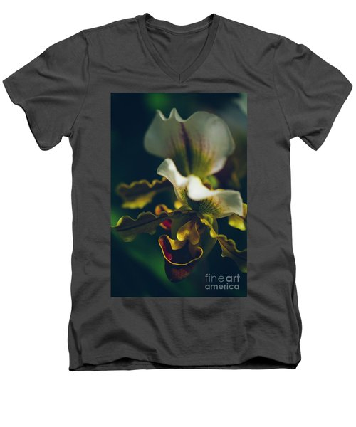 Men's V-Neck T-Shirt featuring the photograph Paphiopedilum Villosum Orchid Lady Slipper by Sharon Mau