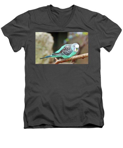 Parakeet  Men's V-Neck T-Shirt by Inspirational Photo Creations Audrey Woods