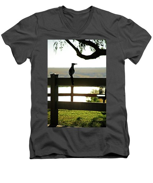 Park Roadrunner Men's V-Neck T-Shirt