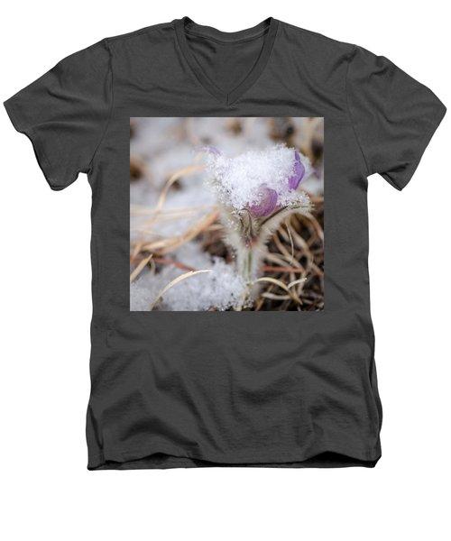 Pasqueflower In The Snow Men's V-Neck T-Shirt
