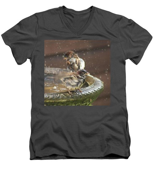 Pass The Towel Please: A House Sparrow Men's V-Neck T-Shirt by John Edwards