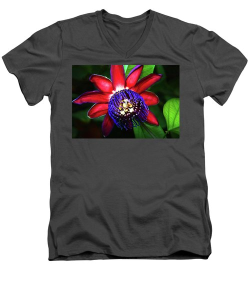 Men's V-Neck T-Shirt featuring the photograph Passion Flower by Anthony Jones