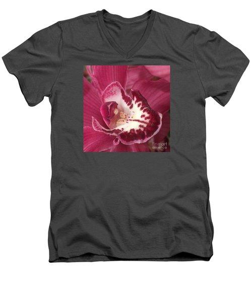 Passionate Purple Men's V-Neck T-Shirt