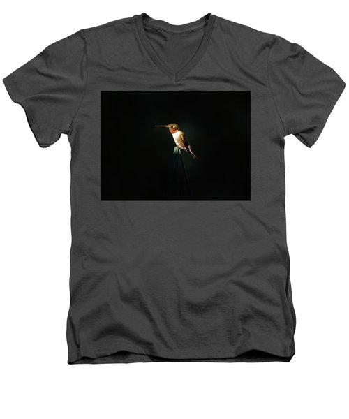 Patch Of Morning Sun Men's V-Neck T-Shirt