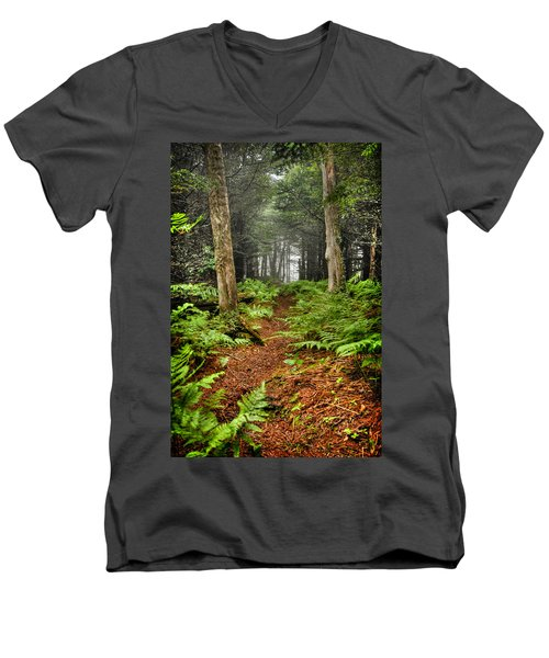 Path In The Ferns Men's V-Neck T-Shirt