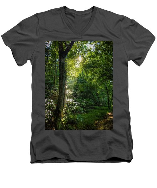 Path Lighting Men's V-Neck T-Shirt