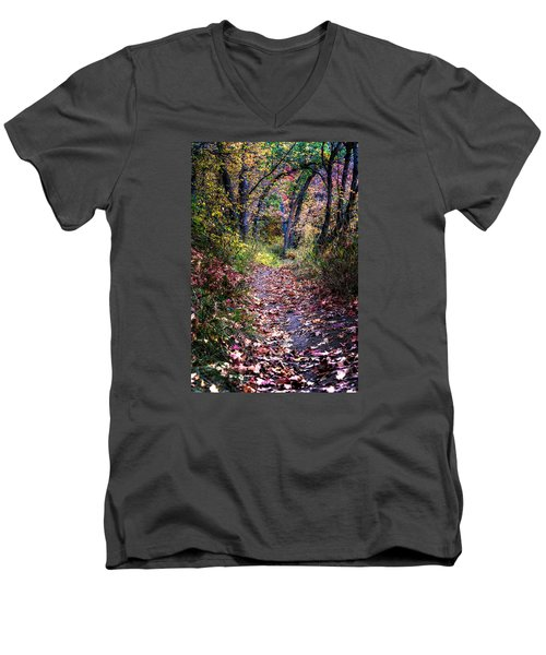 Path Of Leaves Men's V-Neck T-Shirt