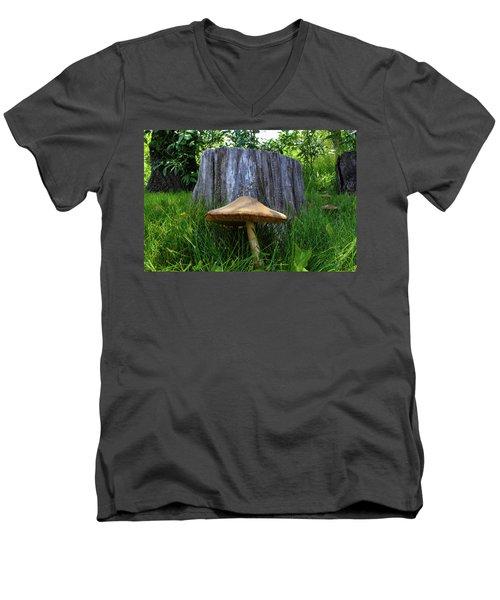 Path Of Mushrooms Men's V-Neck T-Shirt