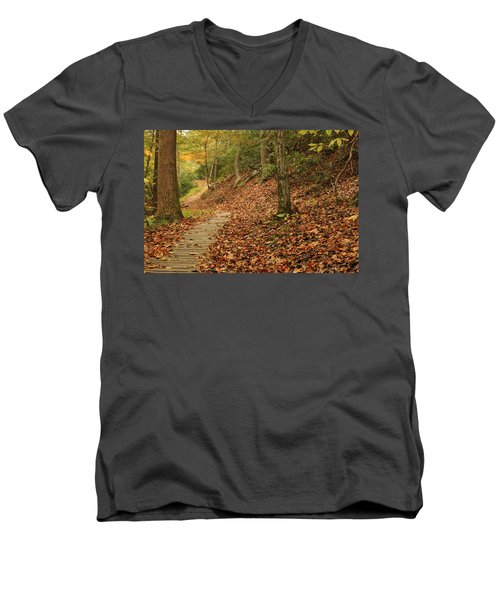 Path To Autumn Men's V-Neck T-Shirt