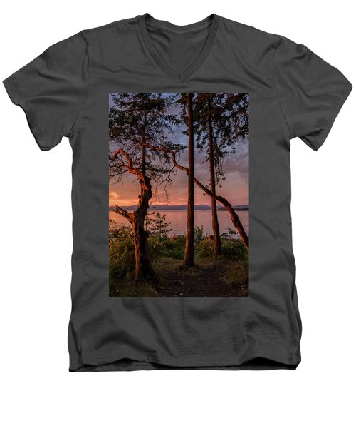 Path To Paradise Men's V-Neck T-Shirt