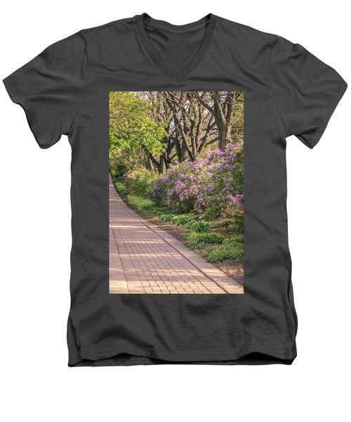Pathway To Beauty In Lombard Men's V-Neck T-Shirt