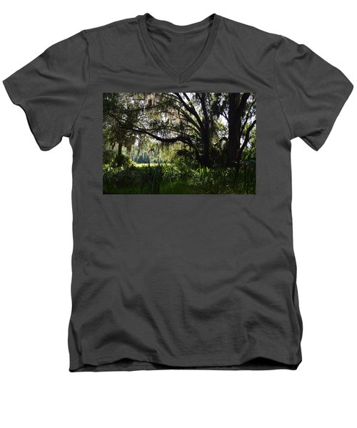 Paynes Prairie Border Men's V-Neck T-Shirt