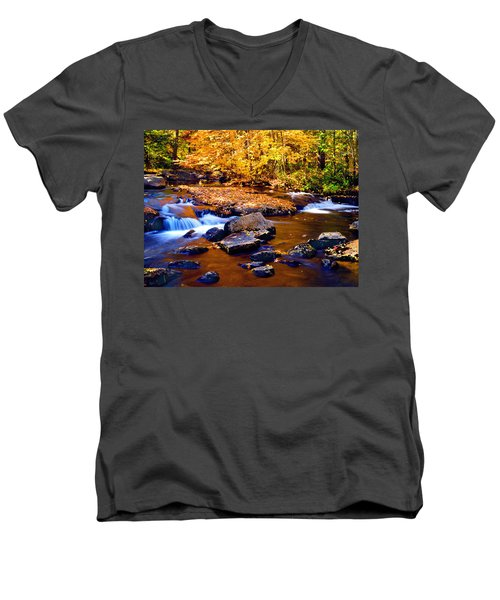 Peaceful Autumn Afternoon  Men's V-Neck T-Shirt