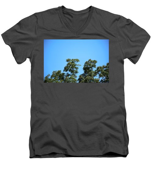 Men's V-Neck T-Shirt featuring the photograph Peaceful Moment by Ray Shrewsberry