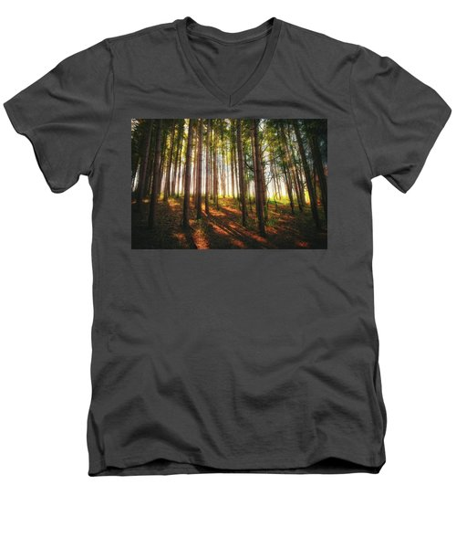 Peaceful Wisconsin Forest 2 - Spring At Retzer Nature Center Men's V-Neck T-Shirt by Jennifer Rondinelli Reilly - Fine Art Photography