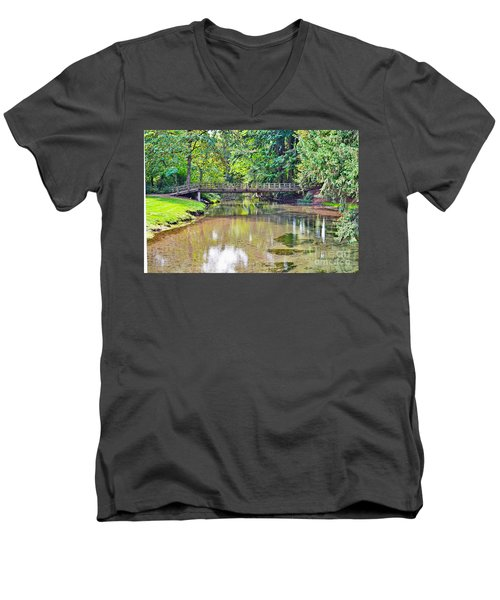 Peacefull Solitude Men's V-Neck T-Shirt