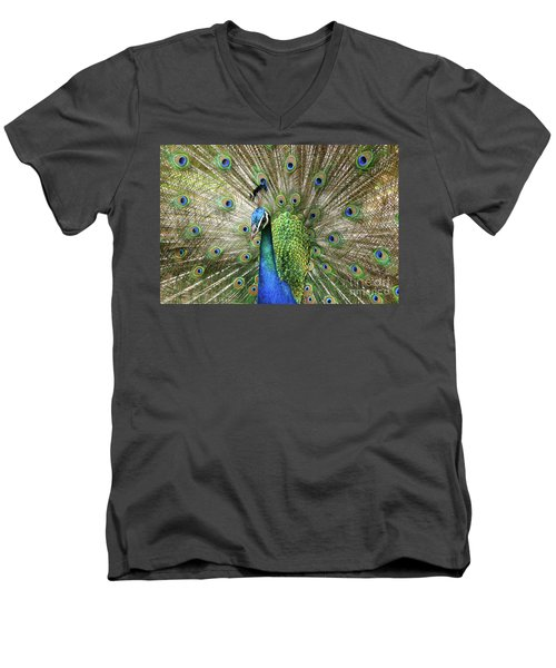 Men's V-Neck T-Shirt featuring the photograph Peacock Indian Blue by Sharon Mau