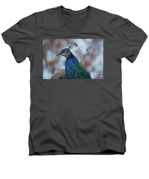 Men's V-Neck T-Shirt featuring the photograph Peacock by Lisa L Silva