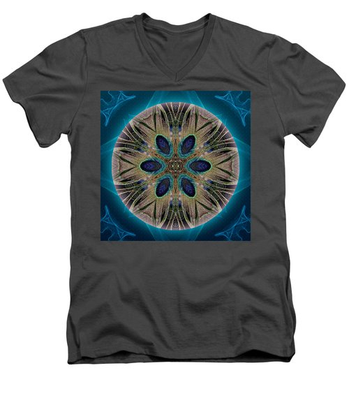 Peacock Power Men's V-Neck T-Shirt