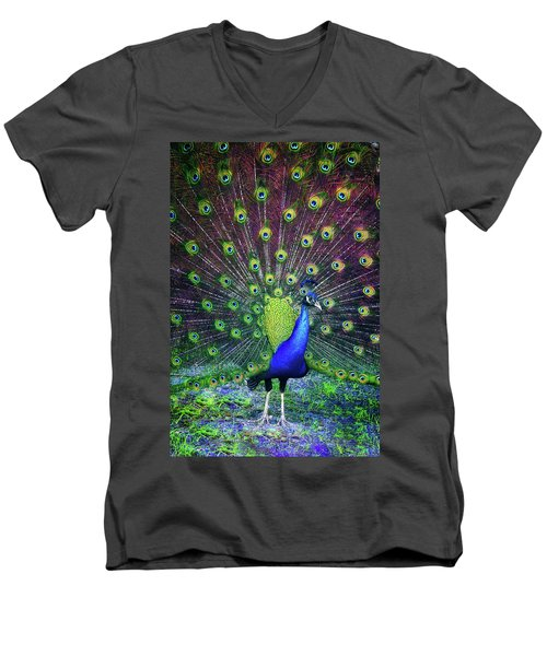Peacock Series 9801 Men's V-Neck T-Shirt