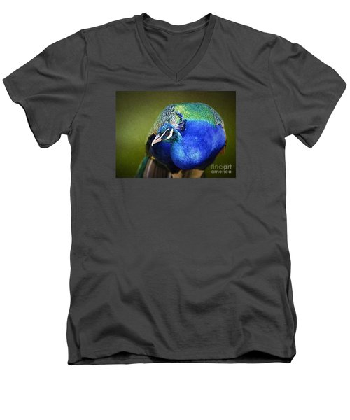 Peacock Men's V-Neck T-Shirt by Suzanne Handel