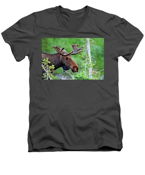 Men's V-Neck T-Shirt featuring the photograph Peaking Moose by Scott Mahon