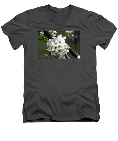 Men's V-Neck T-Shirt featuring the photograph Pear Blossoms In Spring by Sheila Brown