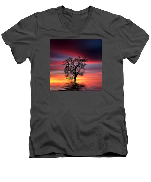 Pear On Lake Men's V-Neck T-Shirt by Bess Hamiti