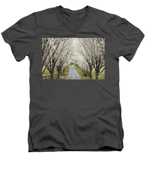 Men's V-Neck T-Shirt featuring the photograph Pear Tree Lane by Benanne Stiens