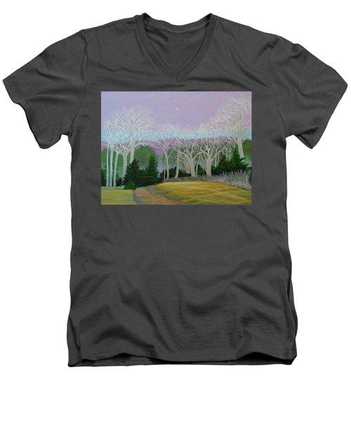 Pearlescence Men's V-Neck T-Shirt