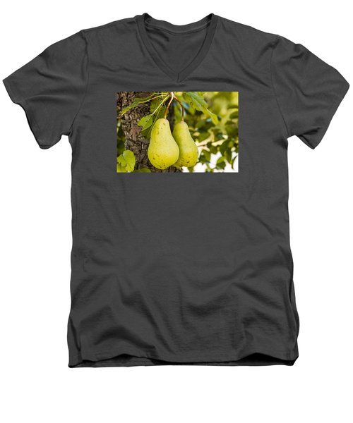Pears 2 Of A Kind Men's V-Neck T-Shirt by Teri Virbickis