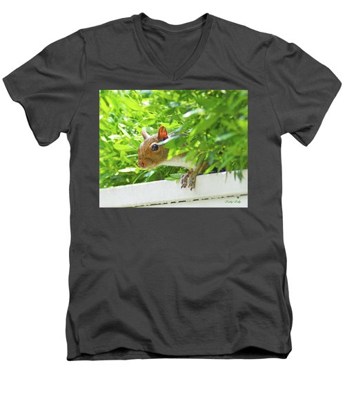 Peek-a-boo Gray Squirrel Men's V-Neck T-Shirt by Kathy Kelly