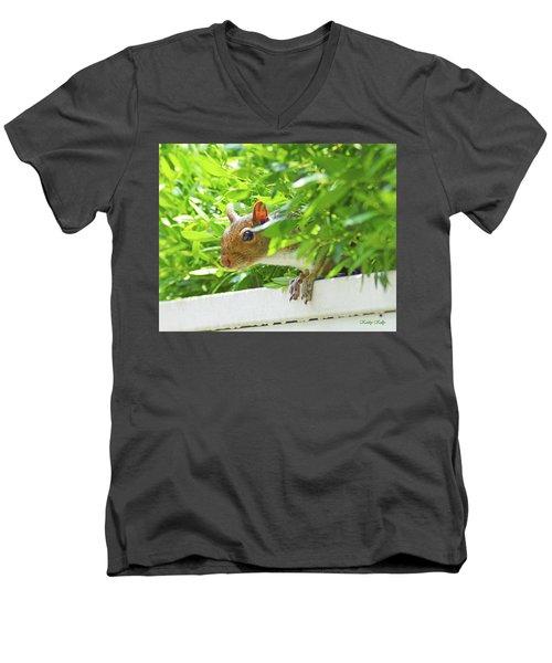 Peek-a-boo Gray Squirrel Men's V-Neck T-Shirt