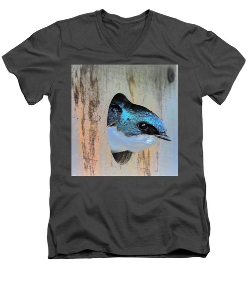 Peek-a-blue Men's V-Neck T-Shirt
