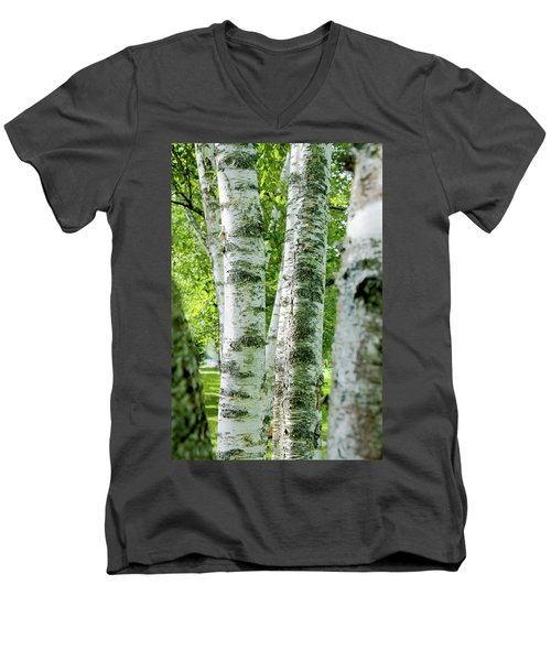Men's V-Neck T-Shirt featuring the photograph Peek A Boo Birch by Greg Fortier