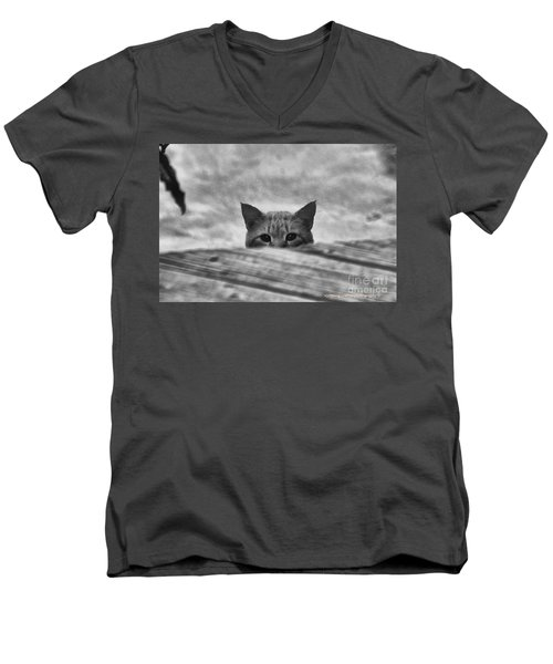 Peek A Boo Men's V-Neck T-Shirt