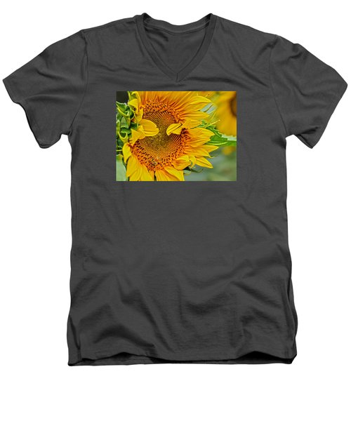 Peek A Boo Men's V-Neck T-Shirt by Joanne Brown