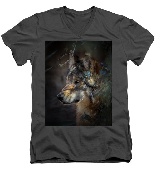 Peeking Out From The Shadows Men's V-Neck T-Shirt